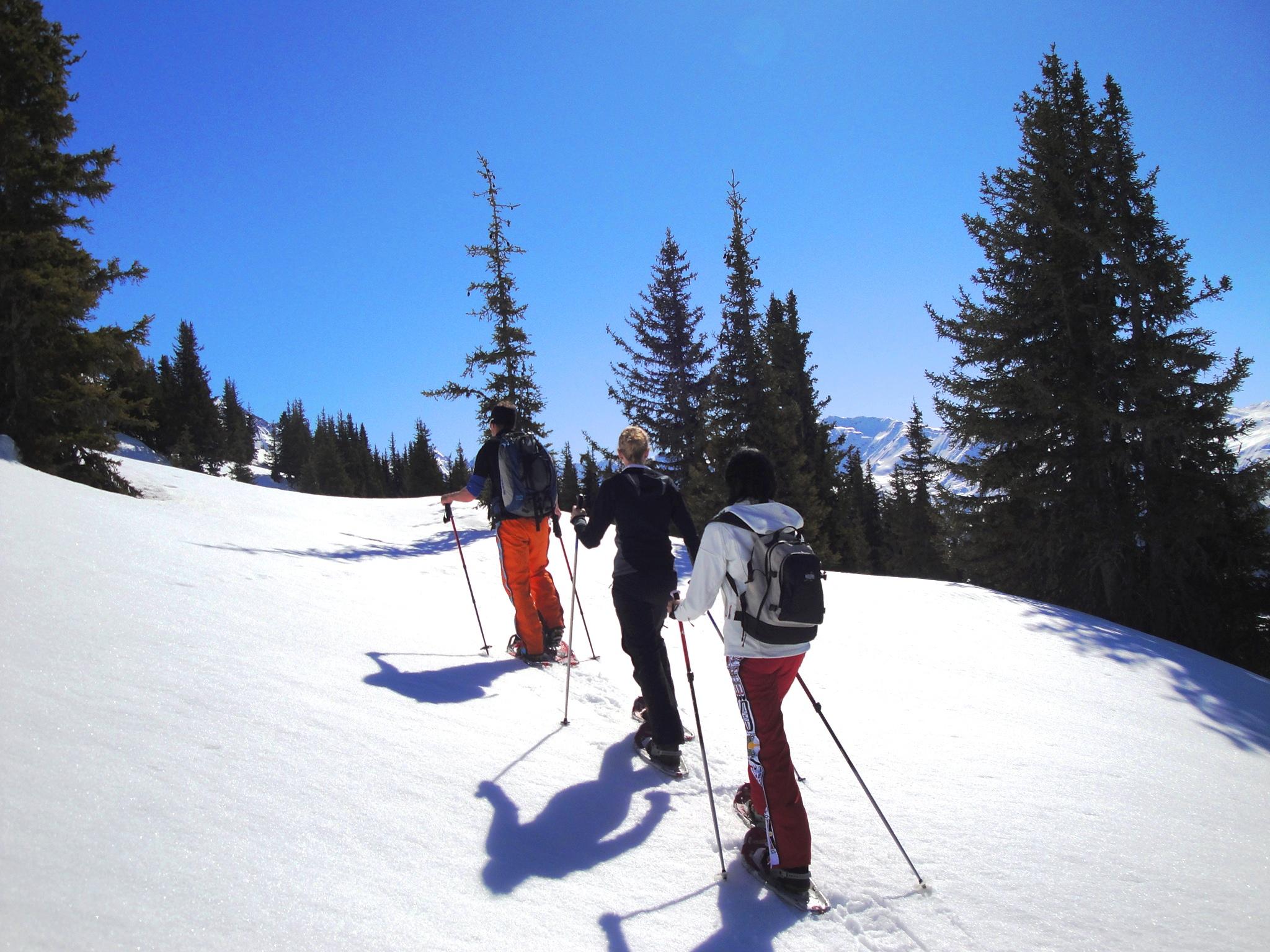 Schneeschuhläufergruppe